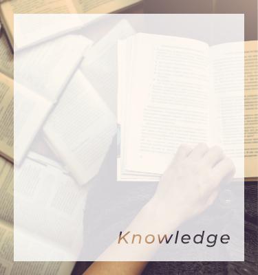 広範な業界知識