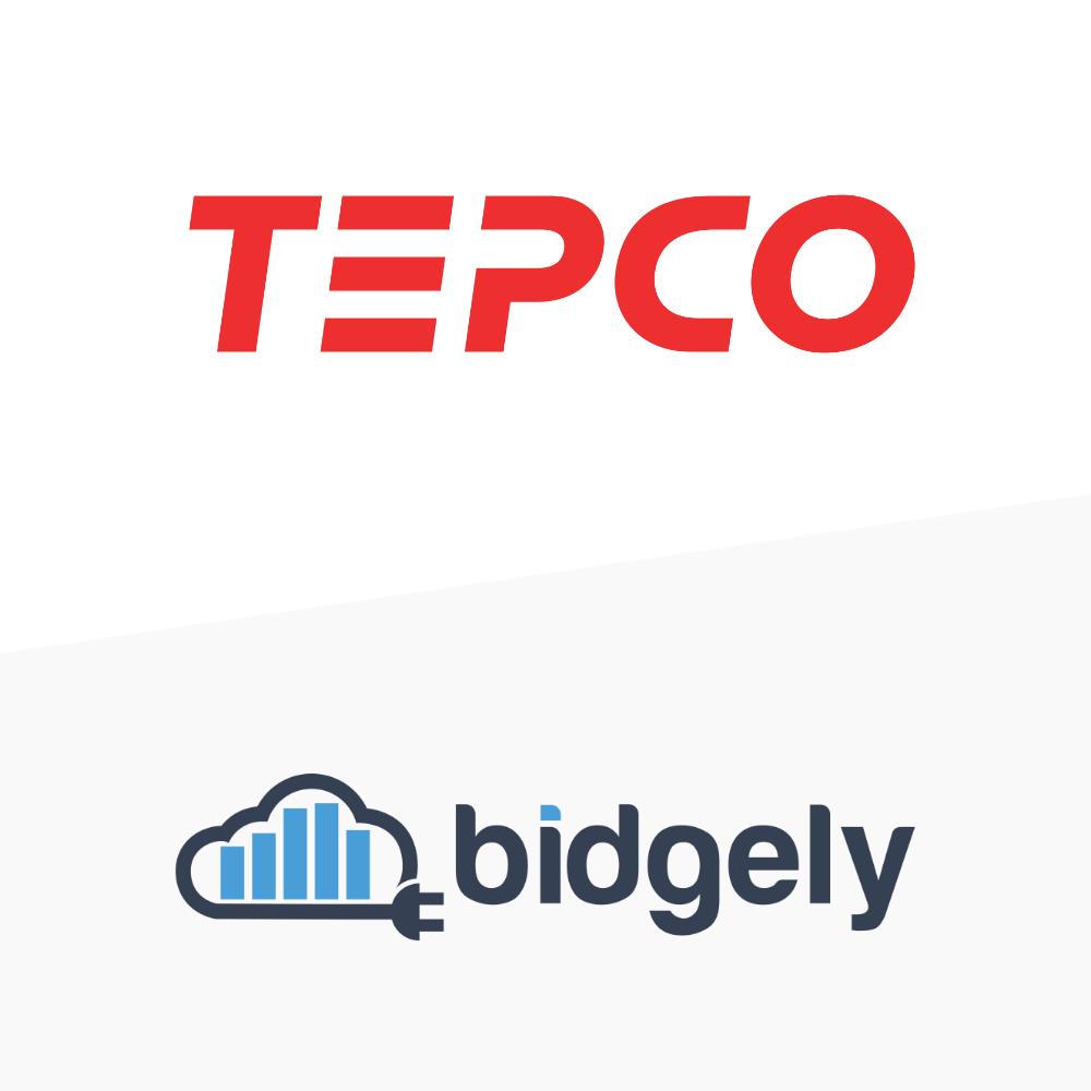 TEPCO / bidgely